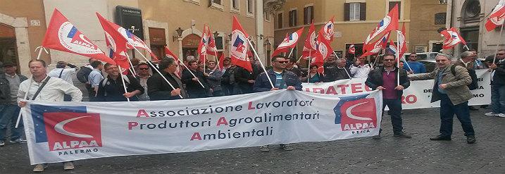Foto della manifestazione nazionale dei piccoli pescatori, Roma, 24 aprile 2015